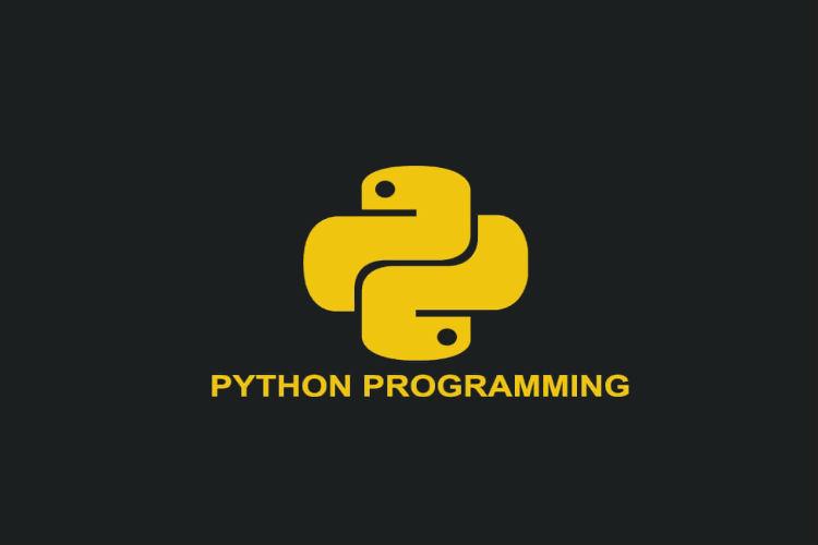 python минск